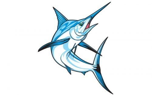 Marlin Fish Graphics